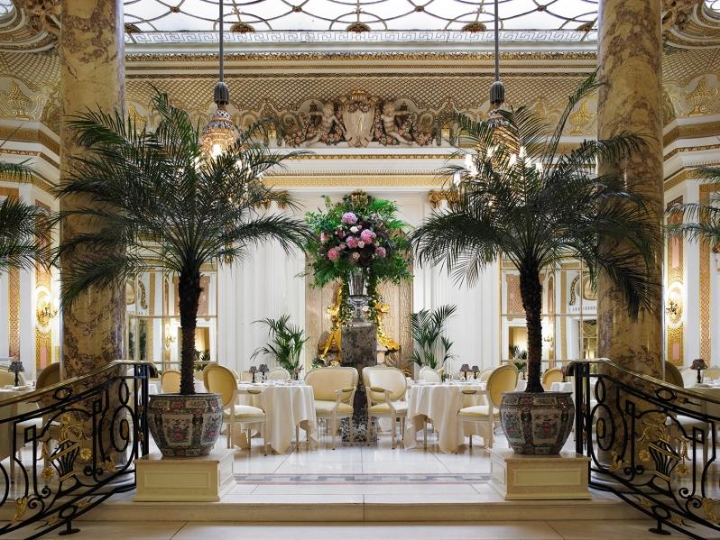 Palm Court 1